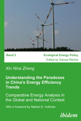 Understanding the Paradoxes in China's Energy Efficiency Trends