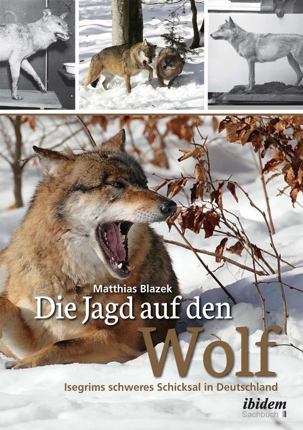 Die Jagd auf den Wolf